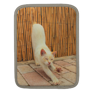 Cat Stretching i Pad Sleeve