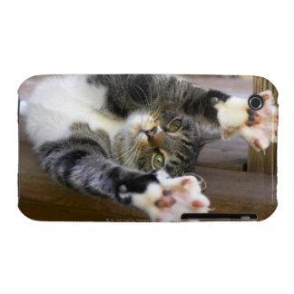 Cat stretching, indoors iPhone 3 Case-Mate case