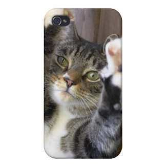 Cat stretching, indoors iPhone 4 case