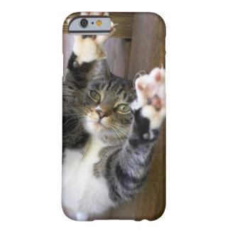 Cat stretching indoors iPhone 6 case