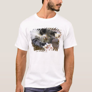Cat stretching, indoors T-Shirt