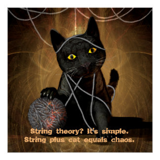 Cat string theory poster