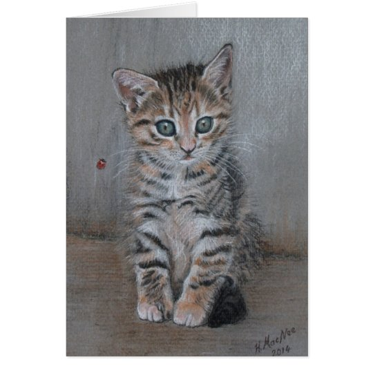 Cat, tabby kitten, just posing, fine art. card