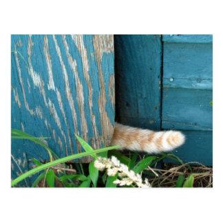Cat Tail calendar ~ postcard