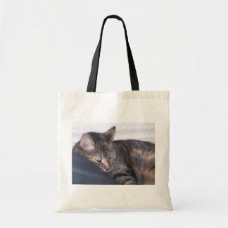 cat taking a nap canvas bag