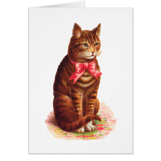 Cat Thank You Card - Customizable