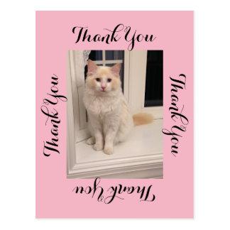 Cat Thank You Postcard - Pink