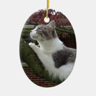 Cat Thoughts Christmas Ornament