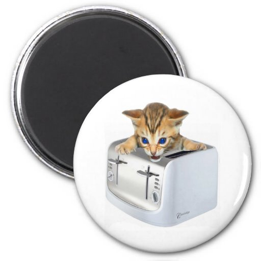 Cat Toaster Magnet