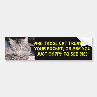 Cat Treats in Your Pocket? MEME Bumper Sticker