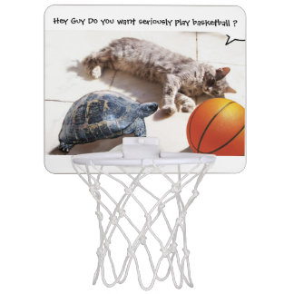 CAT ,TURTLE AND BASKETBALL