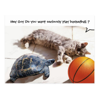 CAT ,TURTLE  AND BASKETBALL POST CARD
