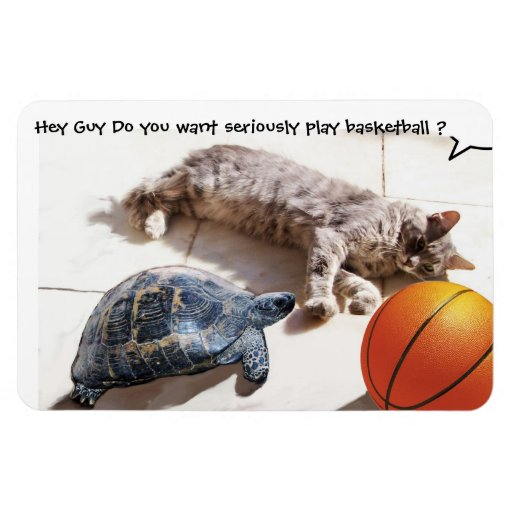 CAT ,TURTLE  AND BASKETBALL FLEXIBLE MAGNET