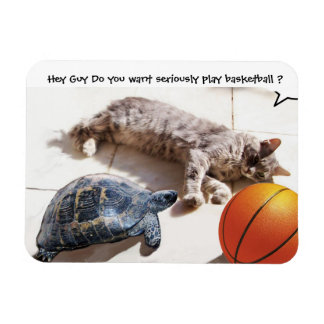 CAT ,TURTLE  AND BASKETBALL RECTANGULAR PHOTO MAGNET