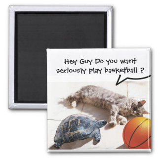 CAT ,TURTLE AND BASKETBALL SQUARE MAGNET