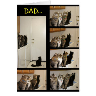 Cat vs Fly Father s Day Card Card