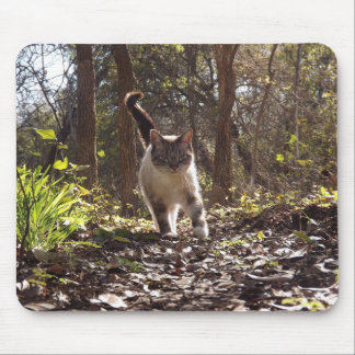 Cat Walking in forest mouspad Mouse Pads
