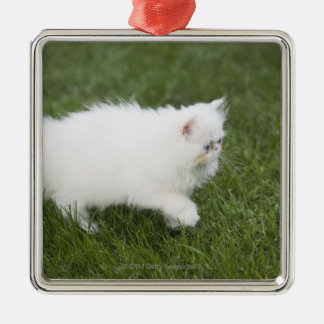 Cat walking in lawn Silver-Colored square decoration
