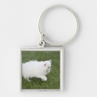 Cat walking in lawn Silver-Colored square key ring