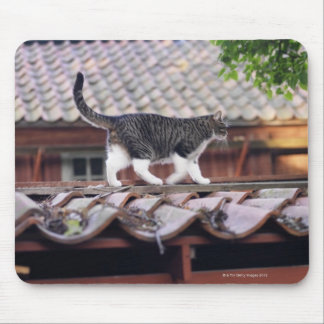 Cat walking on roof of shed mouse pad