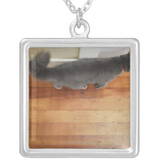 Cat walking silver plated necklace