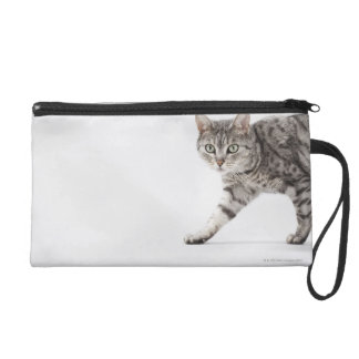 Cat walking wristlet