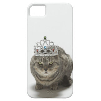 Cat wearing a tiara case for the iPhone 5