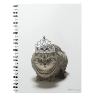 Cat wearing a tiara notebooks