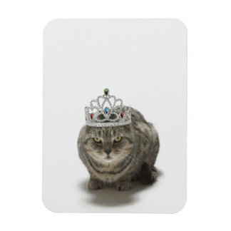 Cat wearing a tiara rectangular photo magnet