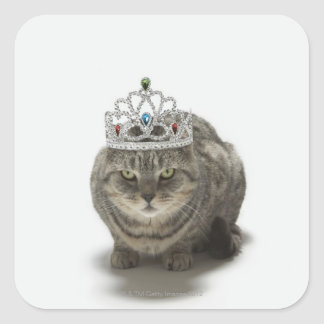 Cat wearing a tiara square sticker