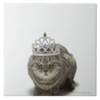 Cat wearing a tiara tile