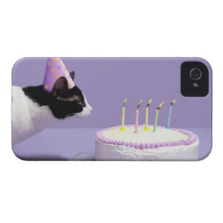 Cat wearing birthday hat blowing out candles iPhone 4 Case-Mate cases