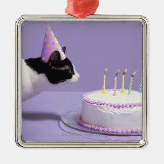 Cat wearing birthday hat blowing out candles on christmas ornament