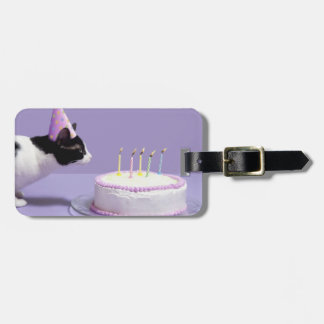 Cat wearing birthday hat blowing out candles on luggage tag