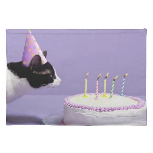 Cat Wearing Birthday Hat Blowing Out Candles Place Mats