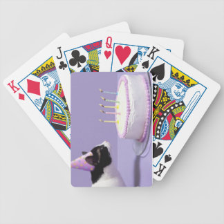 Cat wearing birthday hat blowing out candles poker deck