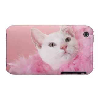 Cat wearing feather boa iPhone 3 case