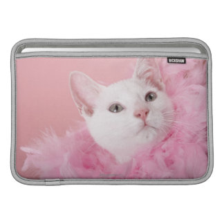 Cat wearing feather boa sleeve for MacBook air