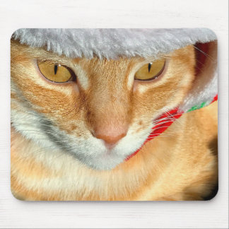 Cat wearing furry hat mouse mat