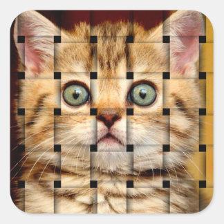 Cat Weave Square Sticker