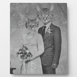 Cat wedding display plaques