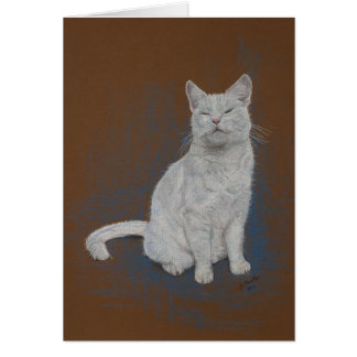 cat, white, Happy Birthday, fine art Card