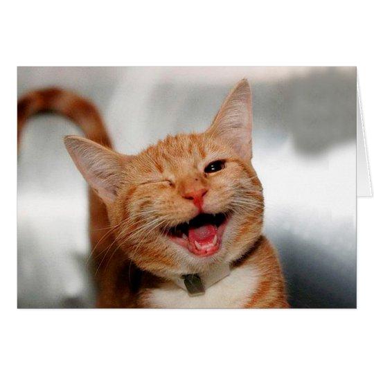 cat winking orange cat funny cats cat smile zazzle co uk
