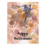 Cat Witch Postcard
