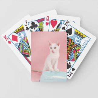 Cat with bowl of milk bicycle playing cards