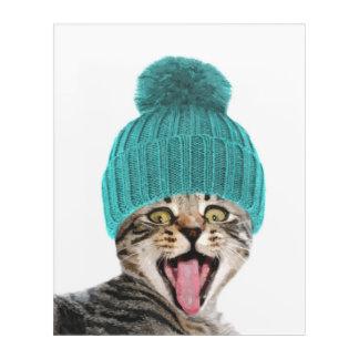 Cat with cap funny animal portrait acrylic print
