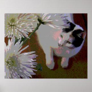 Cat with Chrysanthemums fine art print