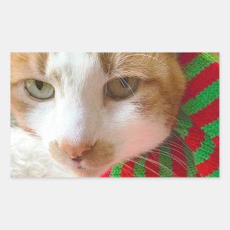 Cat with colorful muffler rectangular sticker