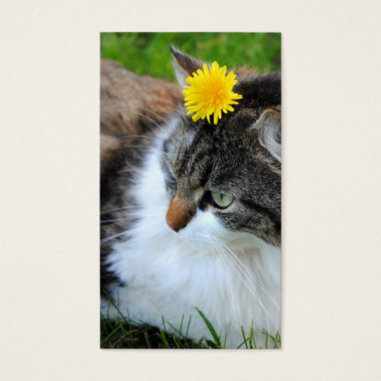 Cat With Dandelion Business Cards