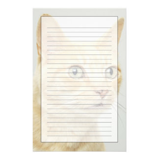 Cat with eyes open wide customised stationery